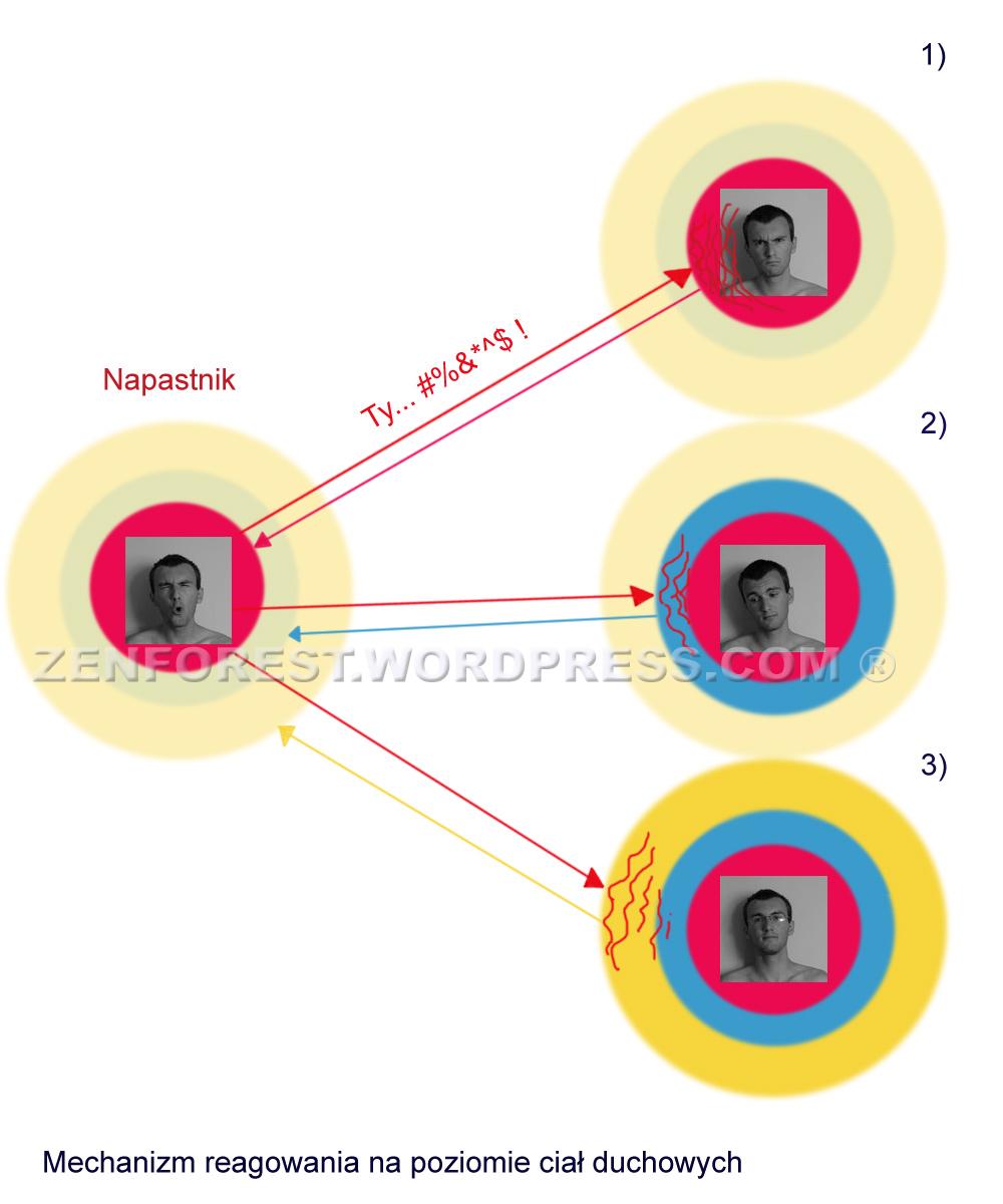 ken wilbor niepodzielone pdf