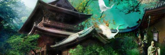 ptaki zen